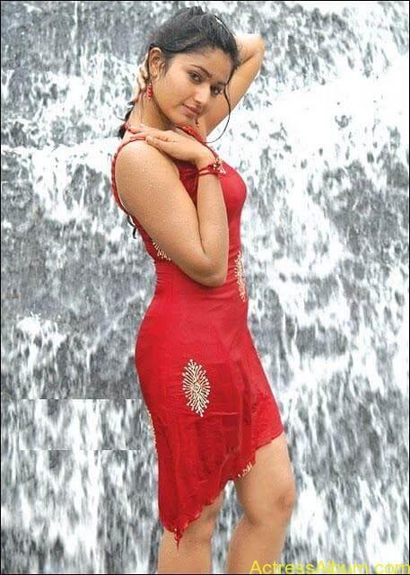 Poonam Bajwa Swimsuit Pics 4