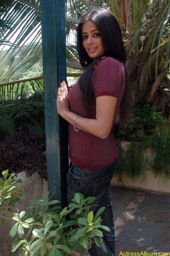 Priyamani hot glamour photos (14)