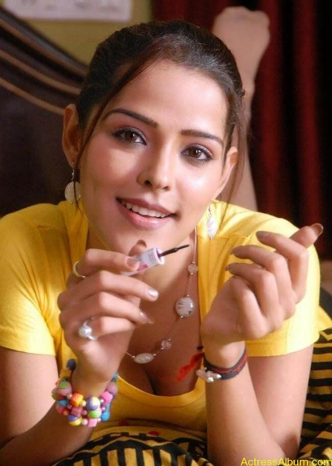 Priyanka Chabra Hot Cleavage Show Photos 1