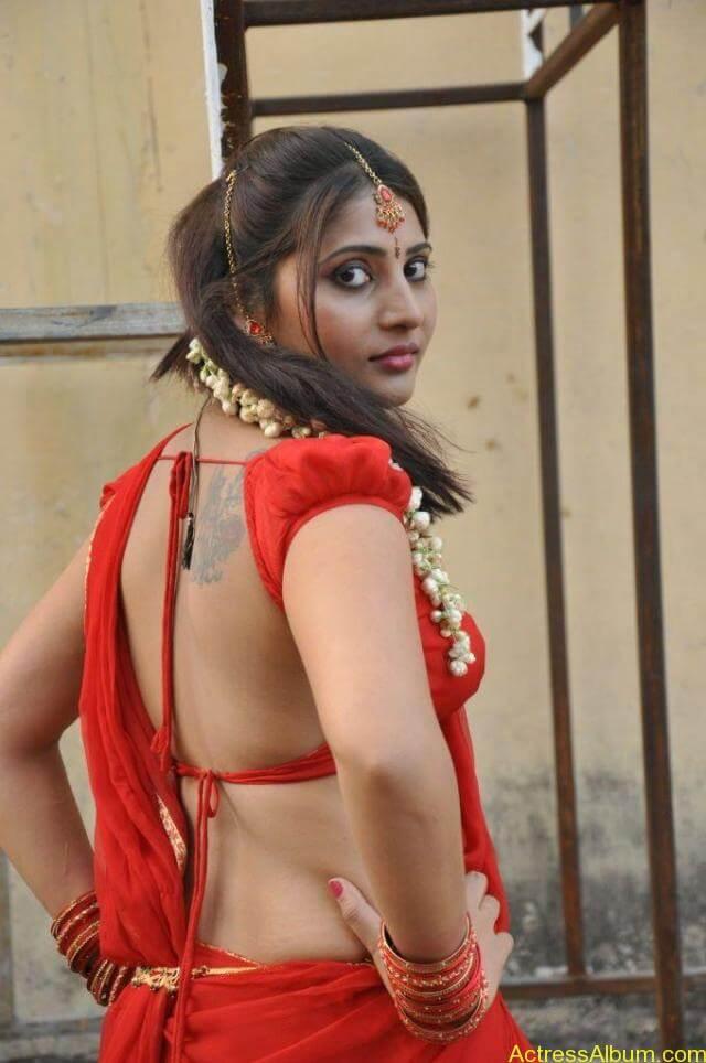 Reshmi hot stills in saree (2)