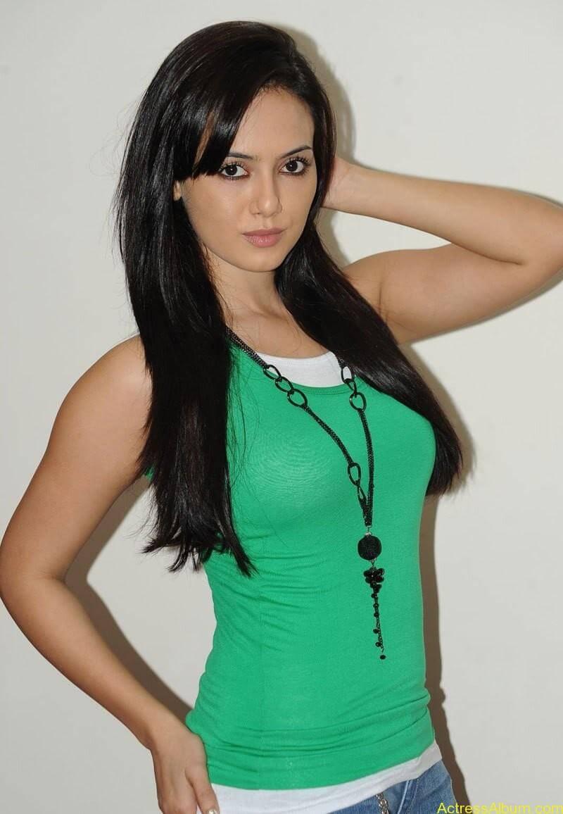 Sana khan latest hot glamour photos (27)