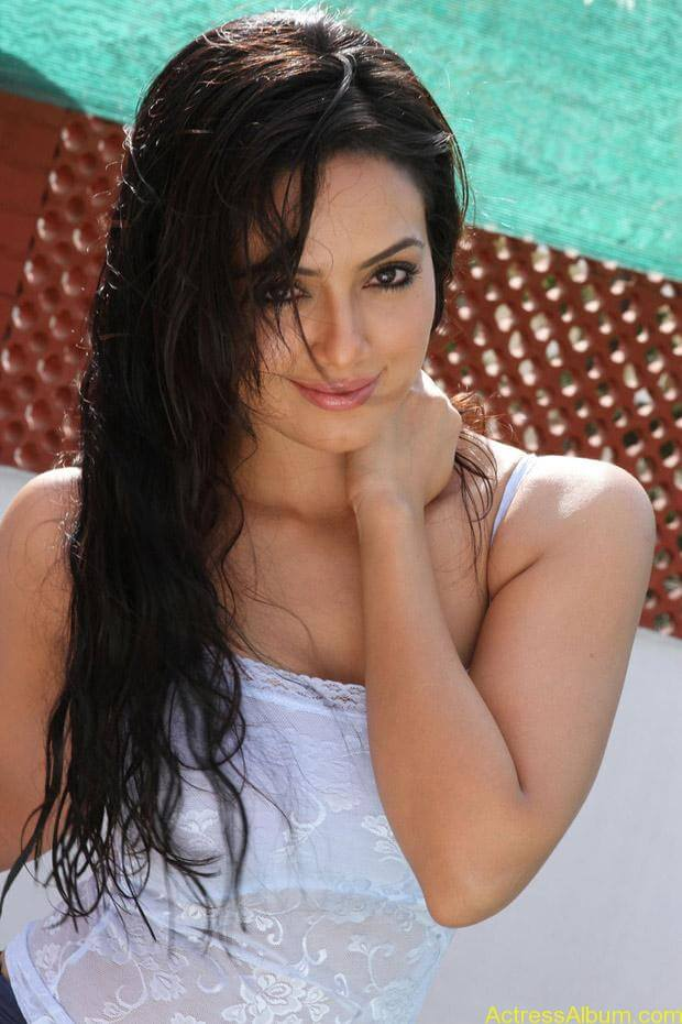 Sana khan latest hot glamour photos (8)