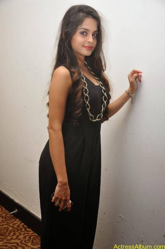 Sheena shahabadi new photos (13)