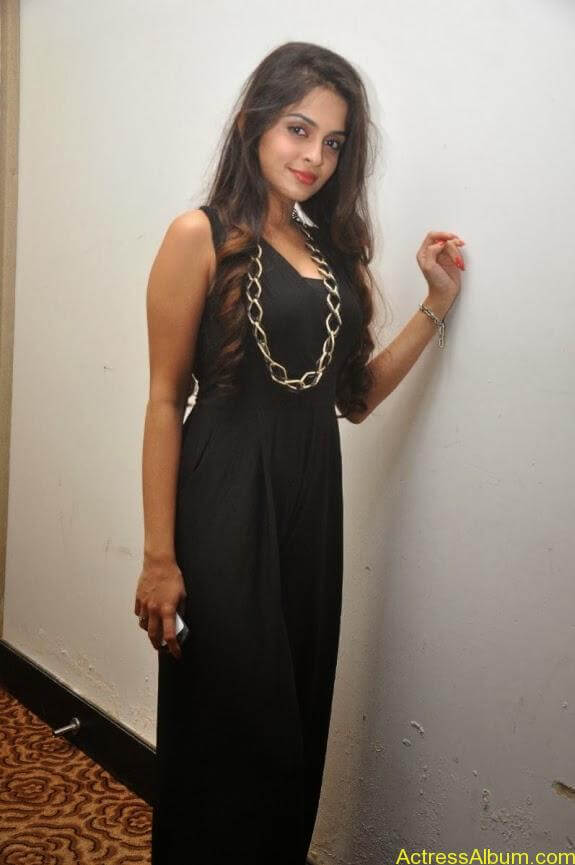 Sheena shahabadi new photos (16)