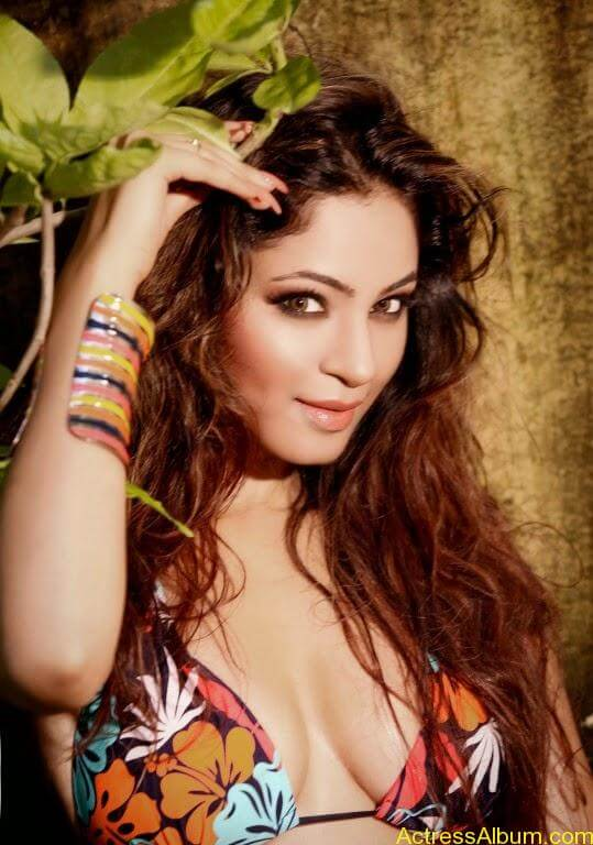 Shilphi Sharma hot bikini photo shoot (1)