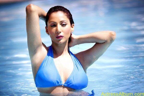 Shilpi-Sharma-Bikini-Photos (3)