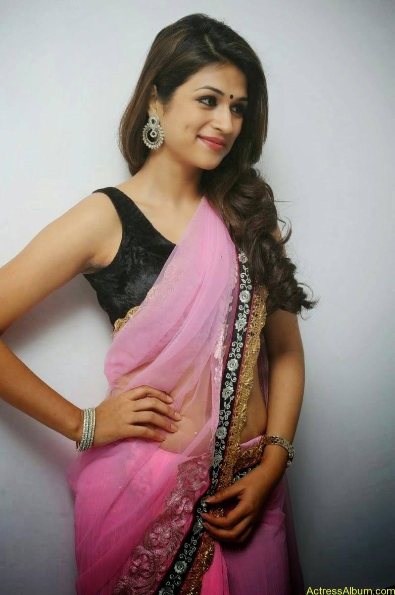Shraddha Das latest Cute Saree Photo Stills (1)