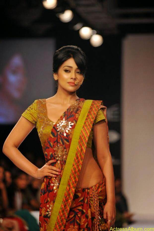 Shriya Saran wallpaper (4)