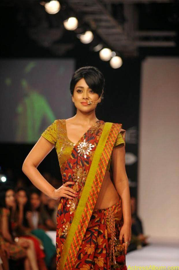 Shriya Saran wallpaper (5)