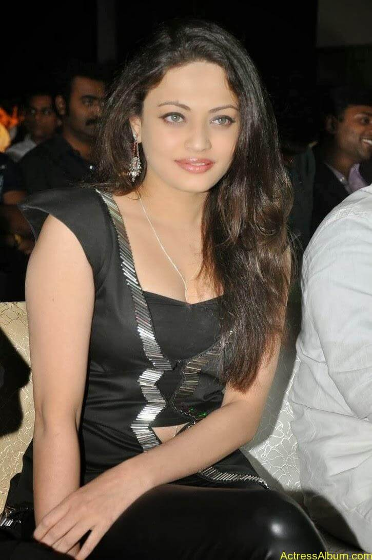 Sneha Ullal Latest hot Photos (17)