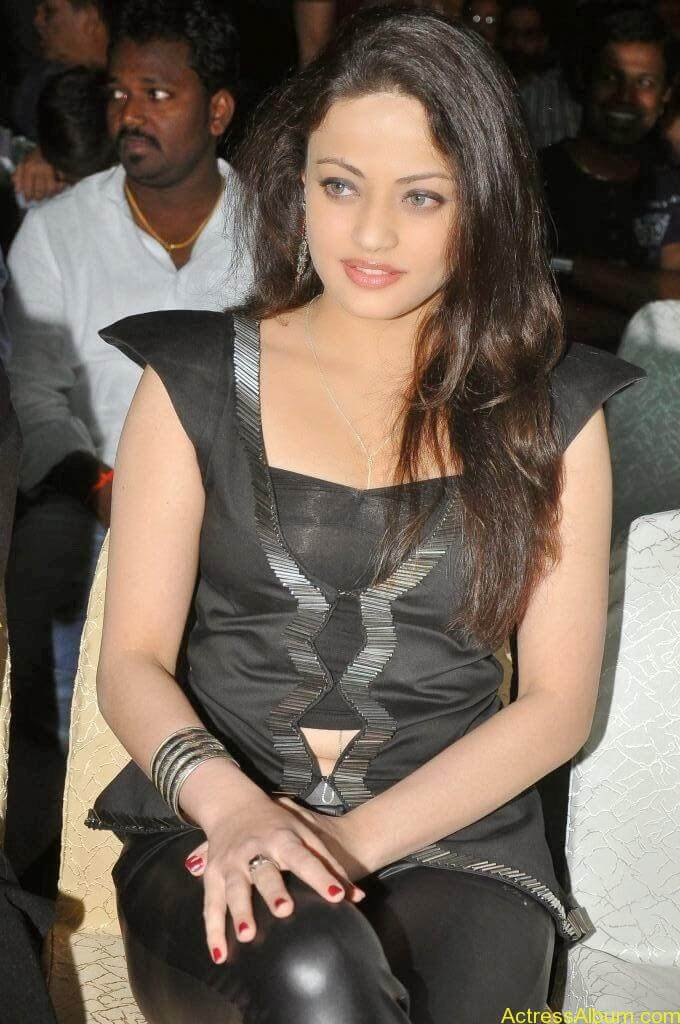 Sneha Ullal Latest hot Photos (20)