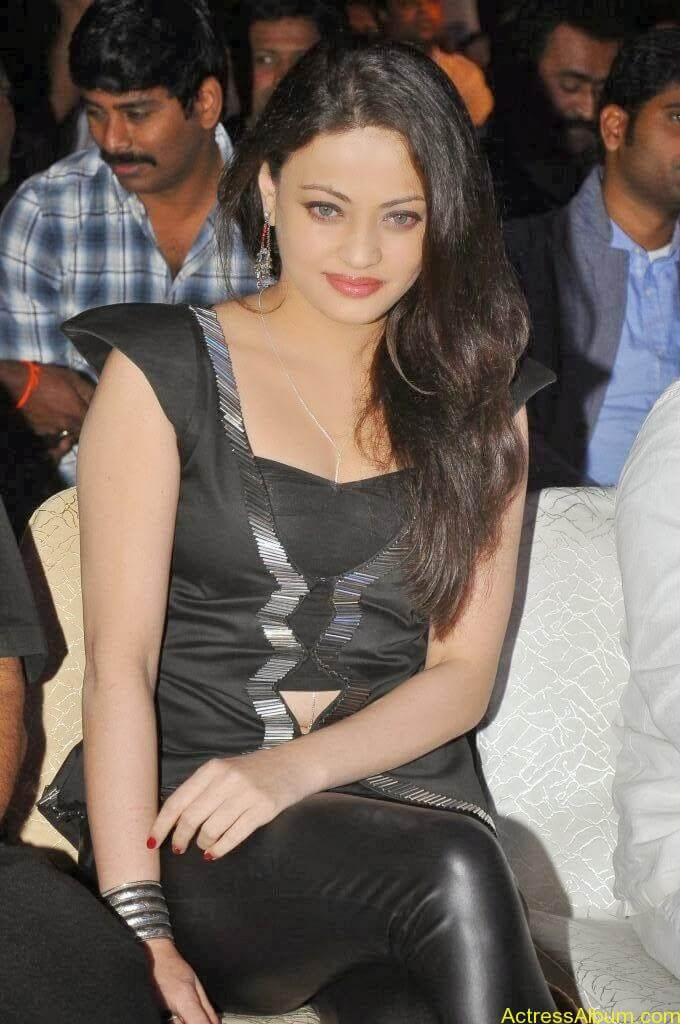 Sneha Ullal Latest hot Photos (21)