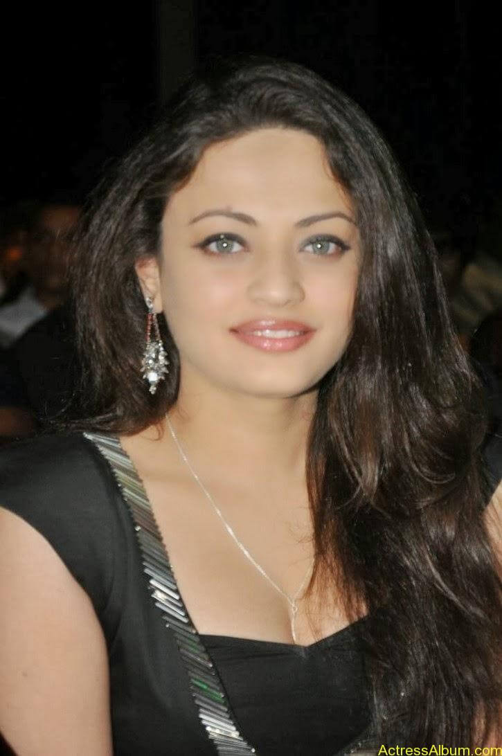 Sneha Ullal Latest hot Photos (4)
