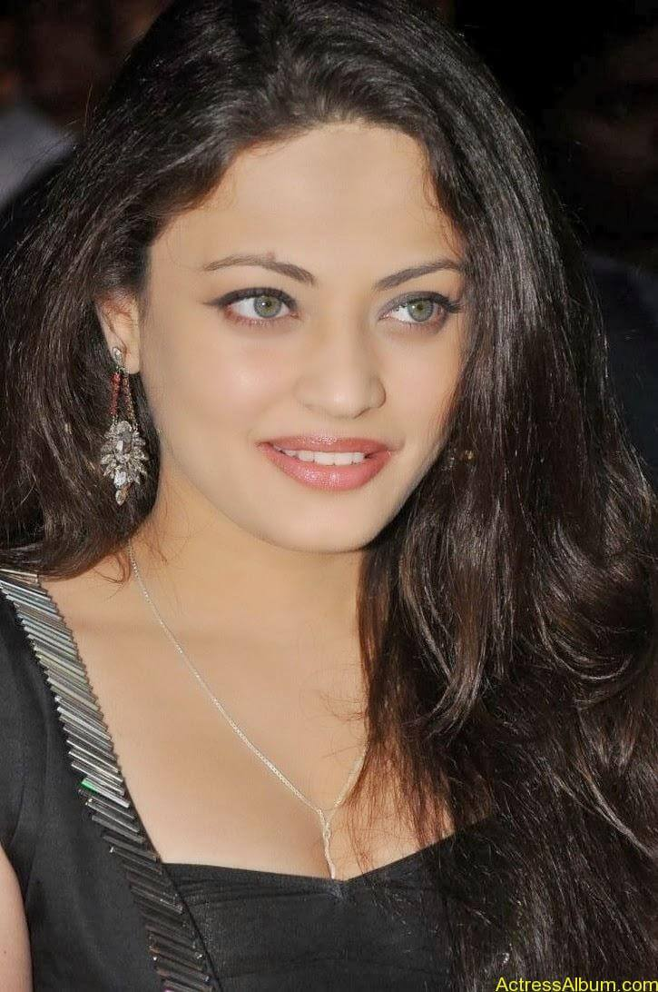 Sneha Ullal Latest hot Photos (5)