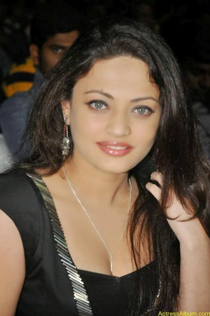 Sneha Ullal Latest hot Photos (6)