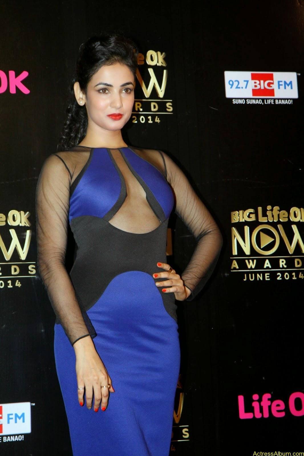 Sonal Chauhan hot (3)