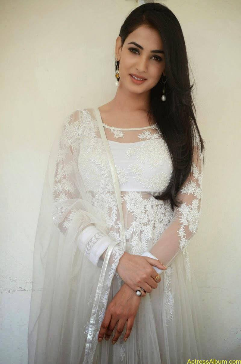 Sonal Chauhan Latest Photo Stills (10)