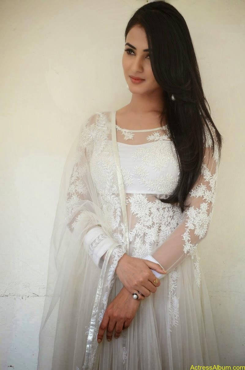 Sonal Chauhan Latest Photo Stills (11)