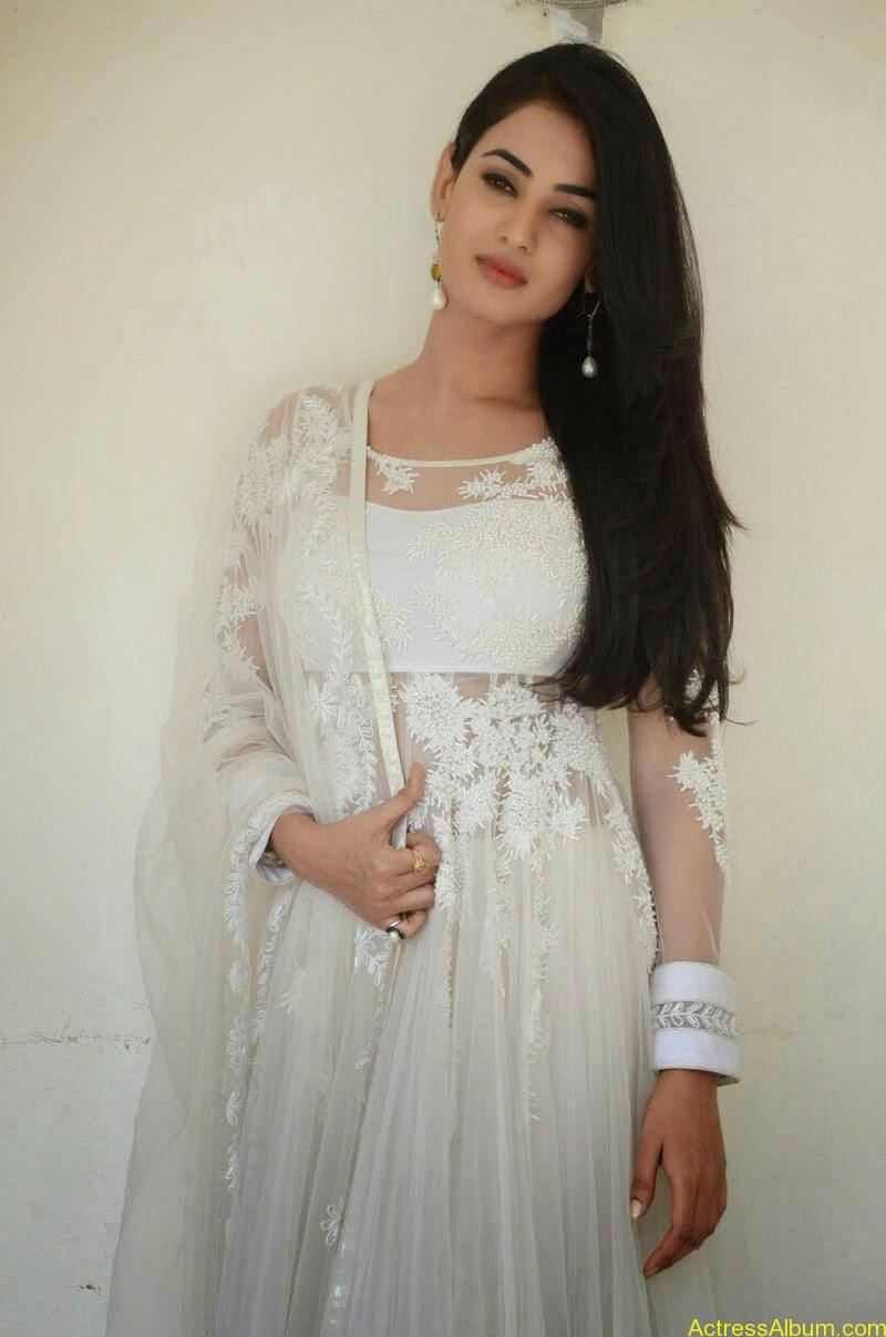 Sonal Chauhan Latest Photo Stills (12)