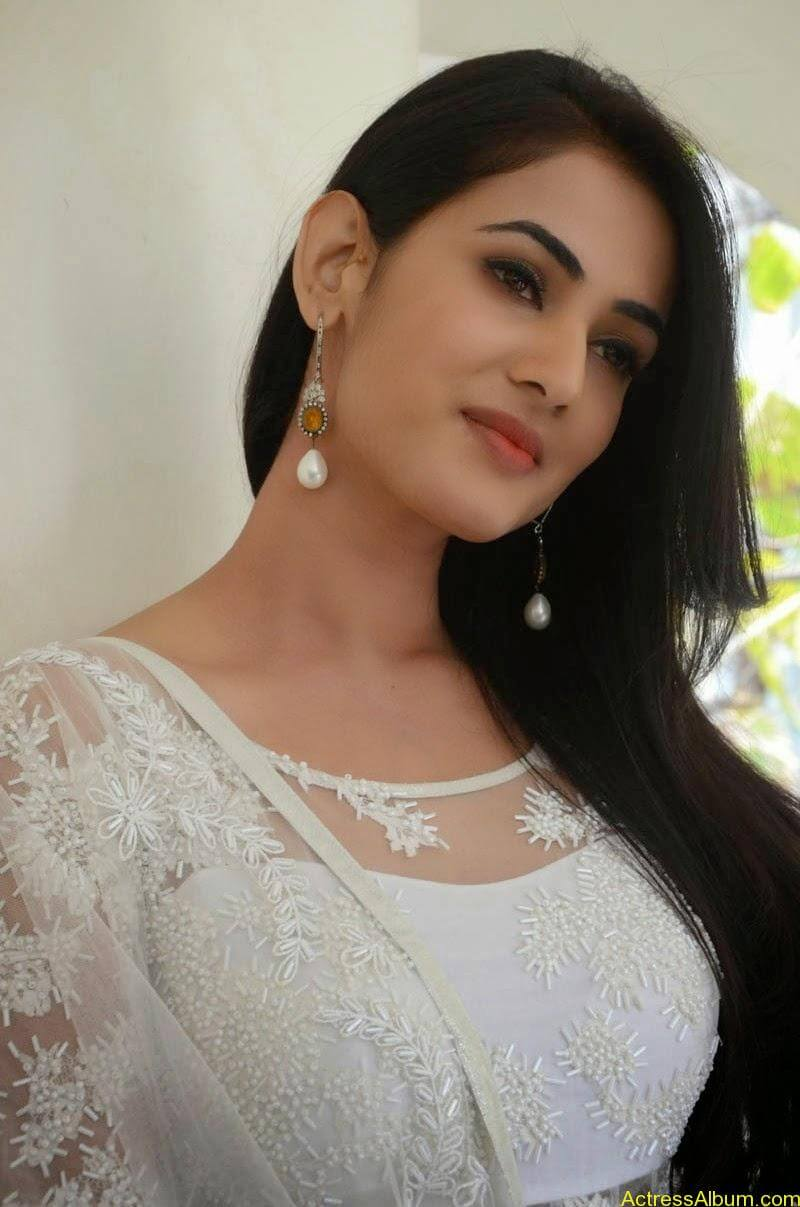 Sonal Chauhan Latest Photo Stills (15)