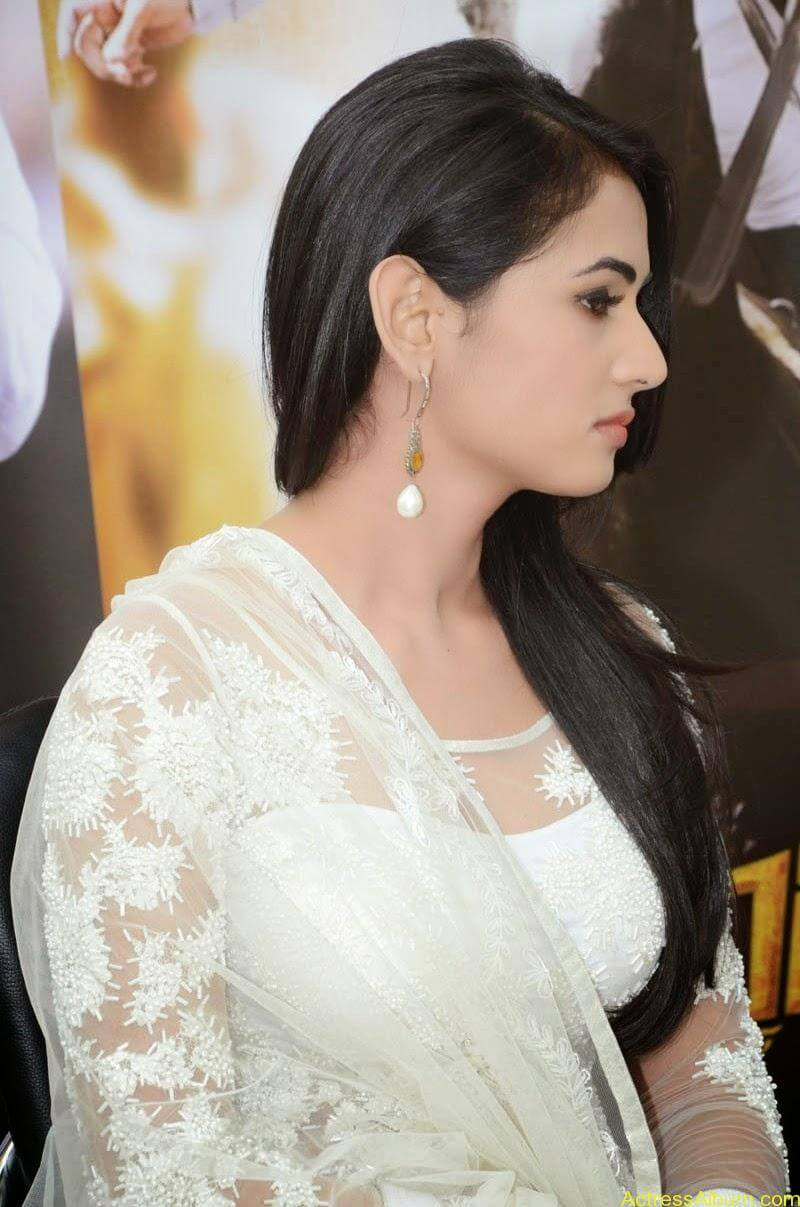 Sonal Chauhan Latest Photo Stills (3)