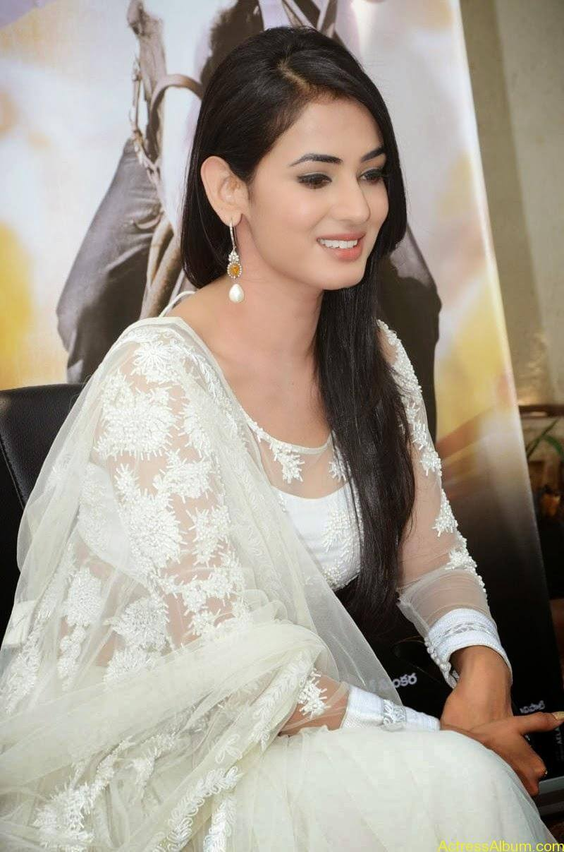 Sonal Chauhan Latest Photo Stills (4)