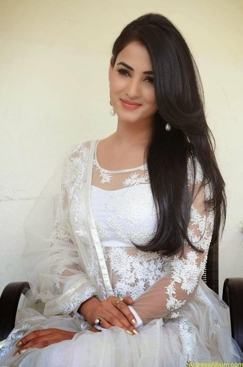 Sonal Chauhan Latest Photo Stills (8)