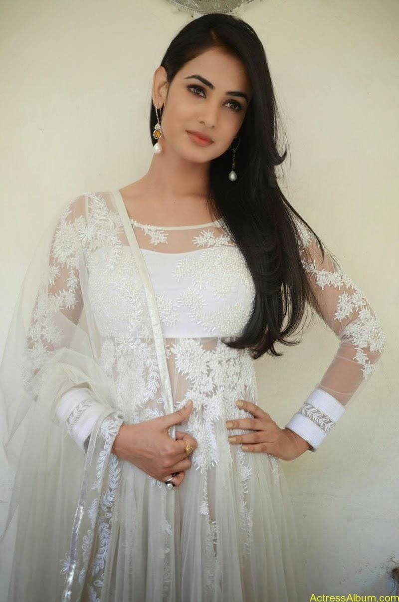 Sonal Chauhan Latest Photo Stills (9)
