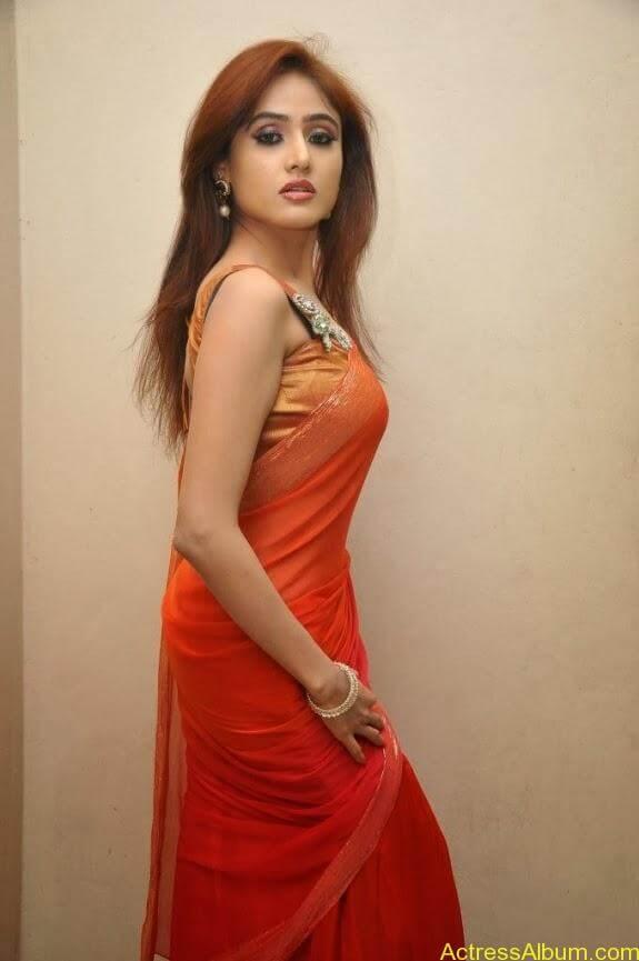 Sony charishta latest stills in saree (1)