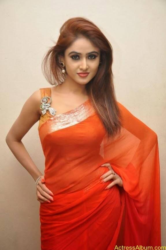 Sony charishta latest stills in saree (10)