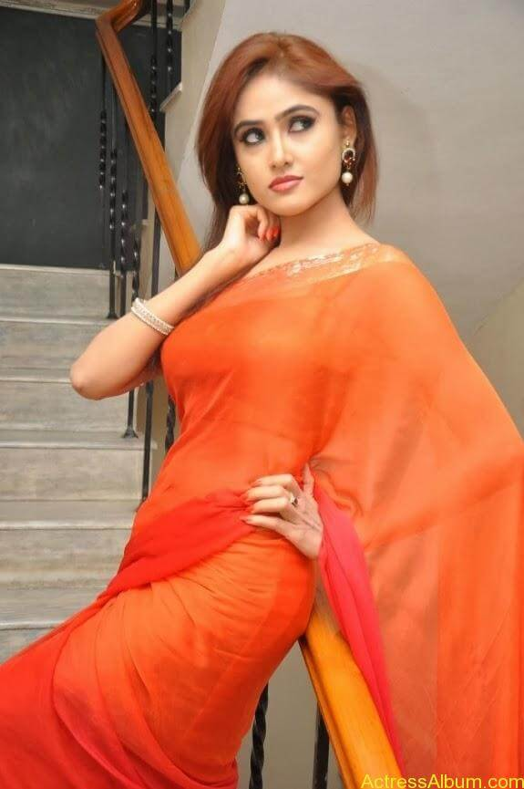 Sony charishta latest stills in saree (11)
