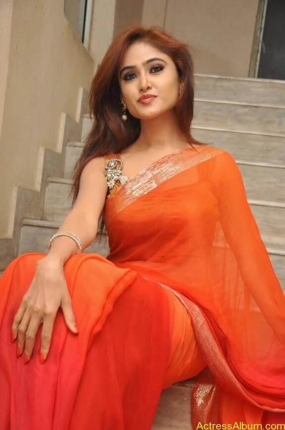 Sony charishta latest stills in saree (12)