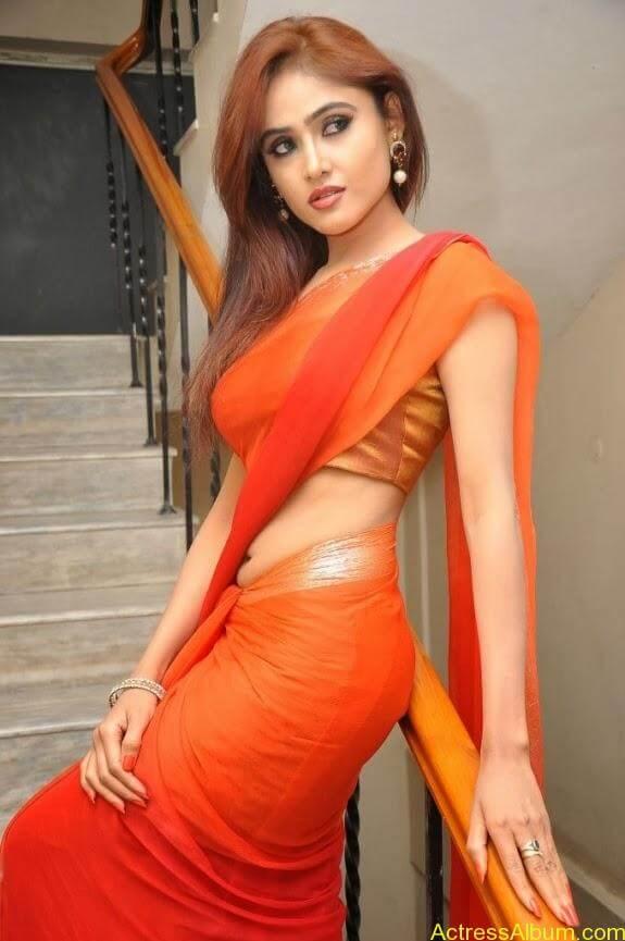 Sony charishta latest stills in saree (14)