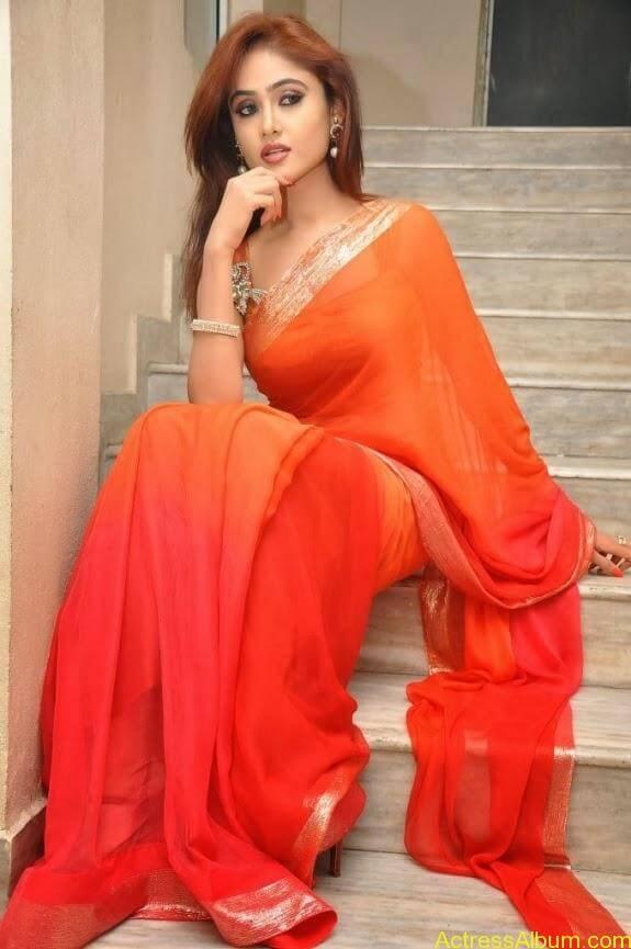 Sony charishta latest stills in saree (15)