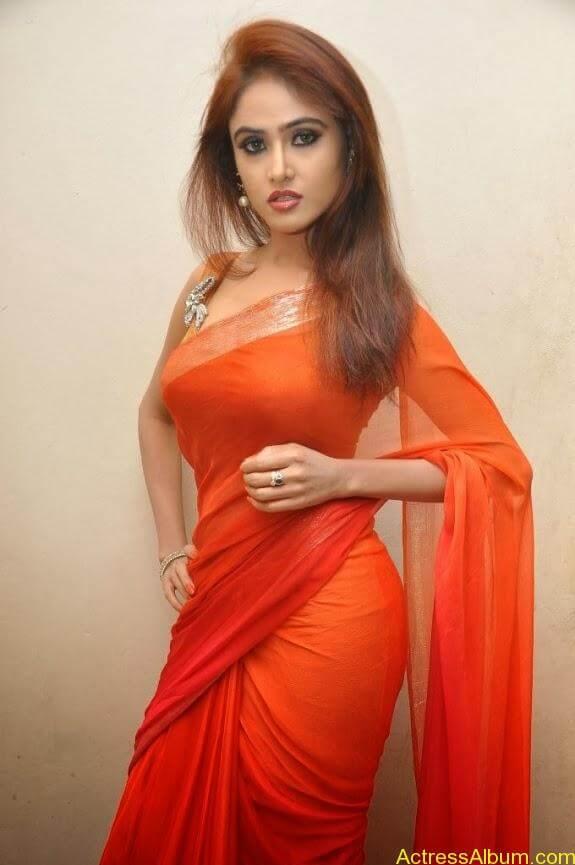 Sony charishta latest stills in saree (16)