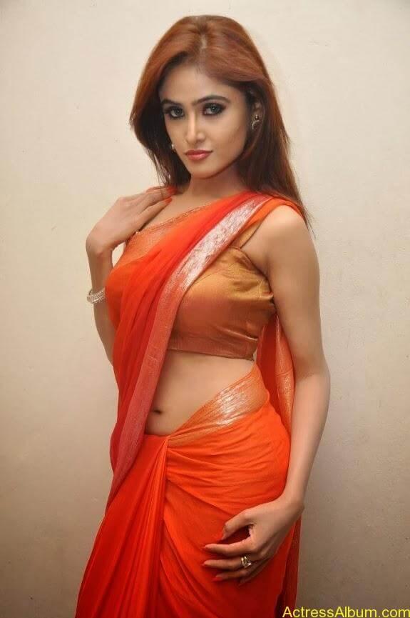 Sony charishta latest stills in saree (18)