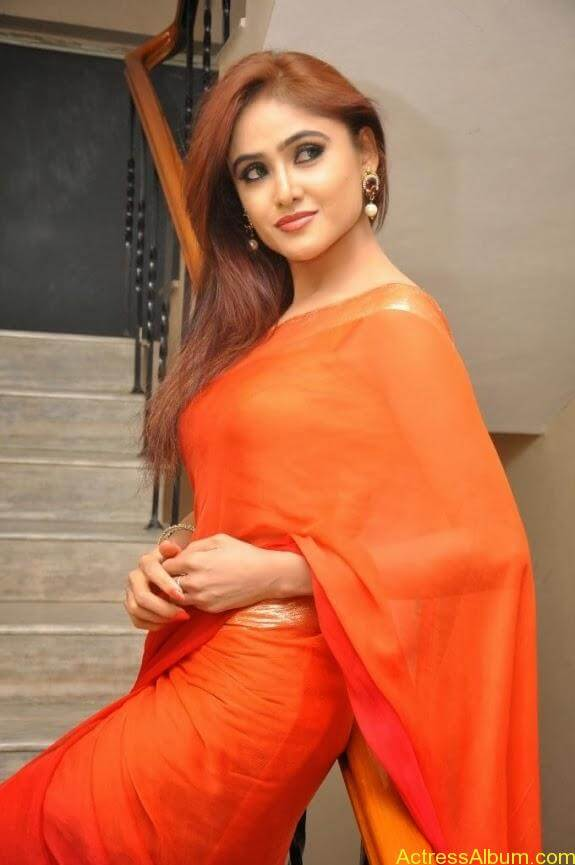 Sony charishta latest stills in saree (2)