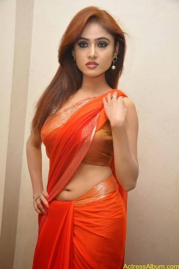 Sony charishta latest stills in saree (3)
