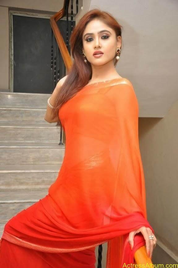 Sony charishta latest stills in saree (4)