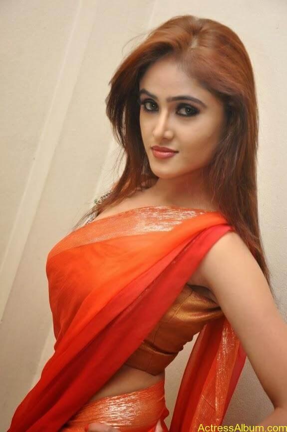 Sony charishta latest stills in saree (5)