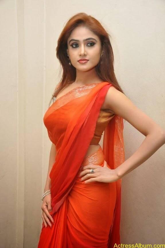 Sony charishta latest stills in saree (6)