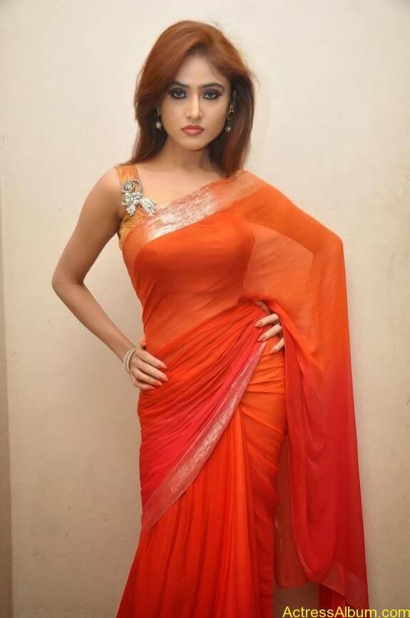 Sony charishta latest stills in saree (7)