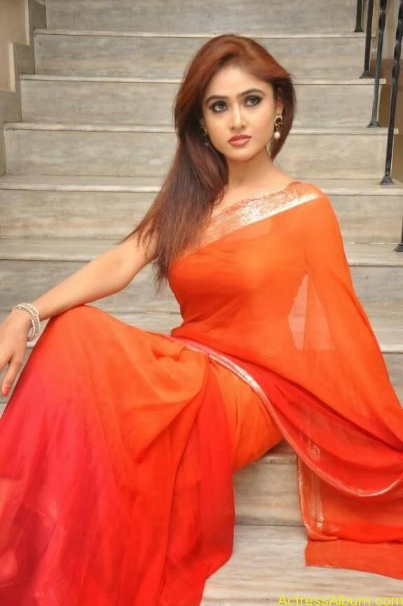 Sony charishta latest stills in saree (8)