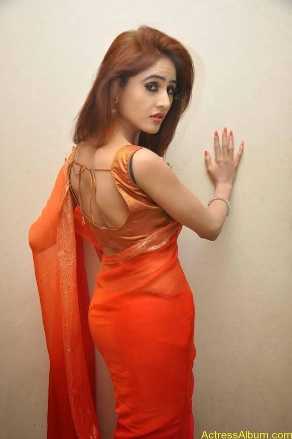 Sony charishta latest stills in saree (9)