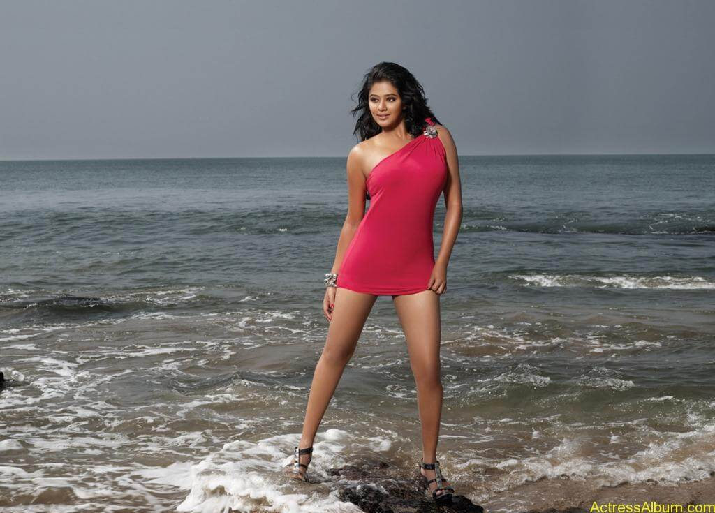 South indian actress swimsuit pics for CCL 1