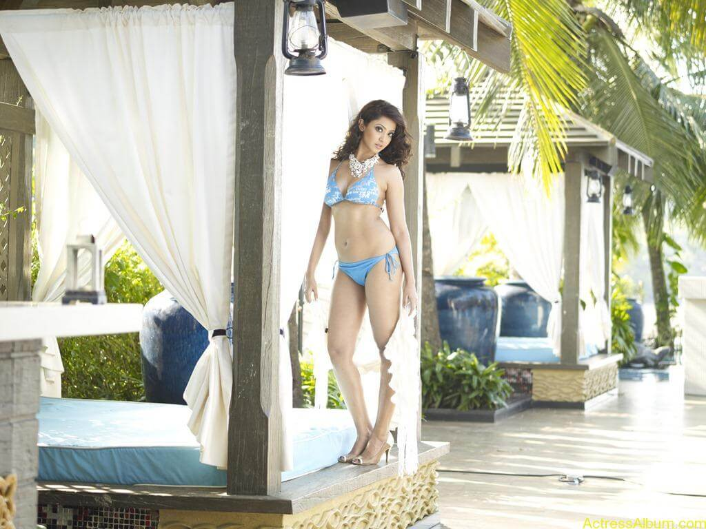 South indian actress swimsuit pics for CCL 11