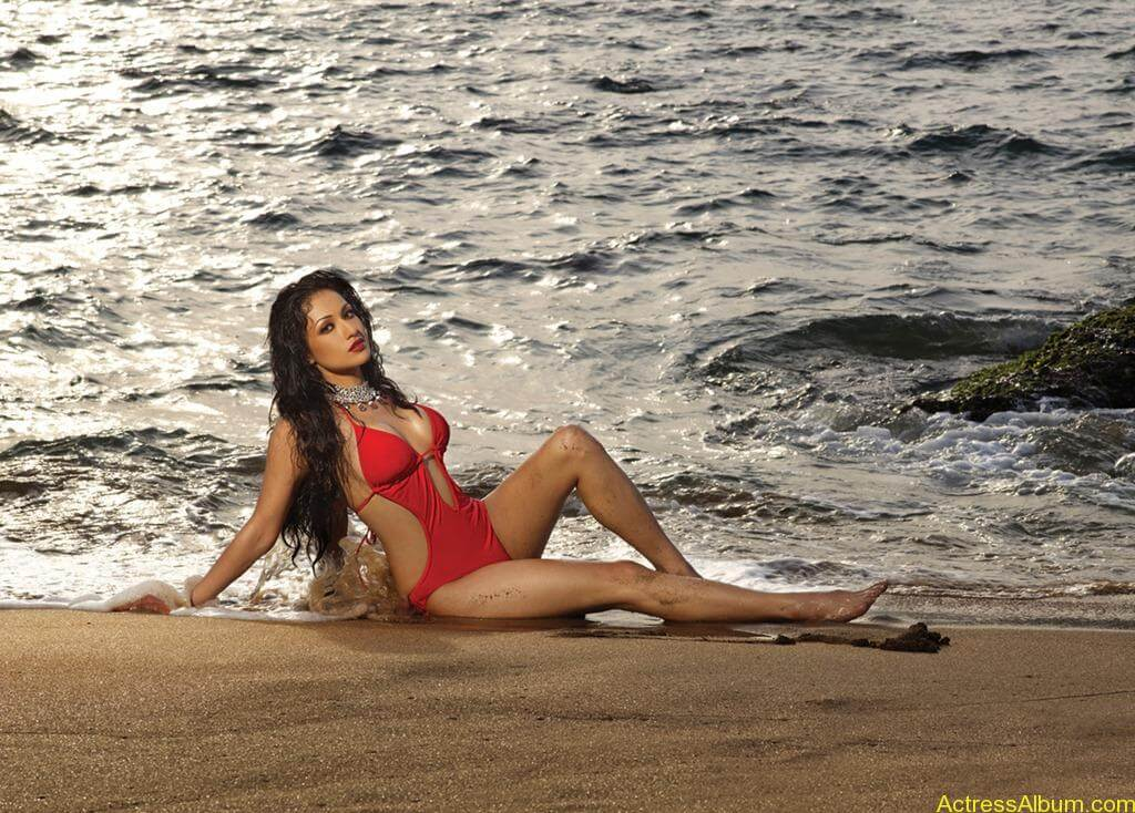 South indian actress swimsuit pics for CCL 16