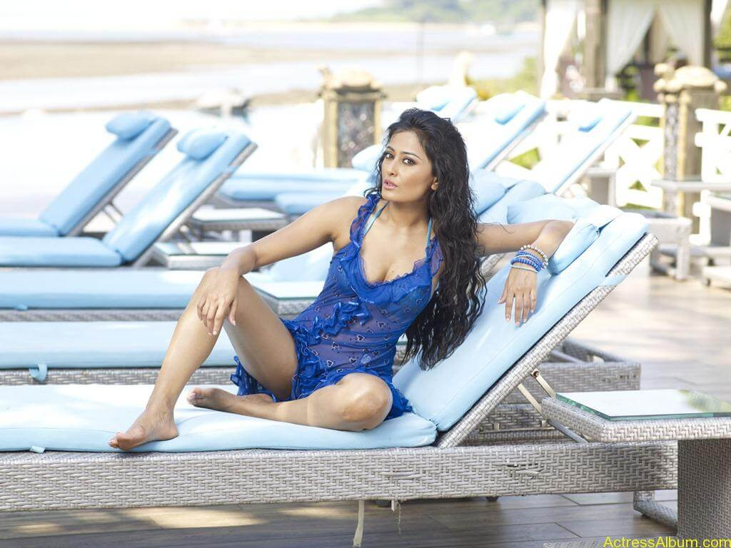 South indian actress swimsuit pics for CCL 17