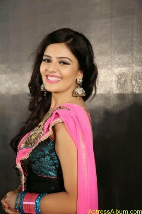 Srimukhi stills in saree (11)