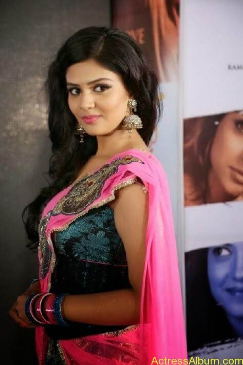 Srimukhi stills in saree (4)